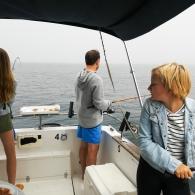 Passeios Sea Life Lovers